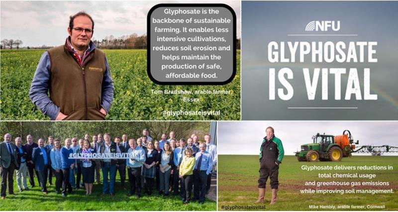 glyphosate composite image_49298