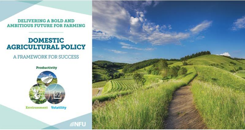 NFU unveils detailed plans for a future domestic agricultural policy