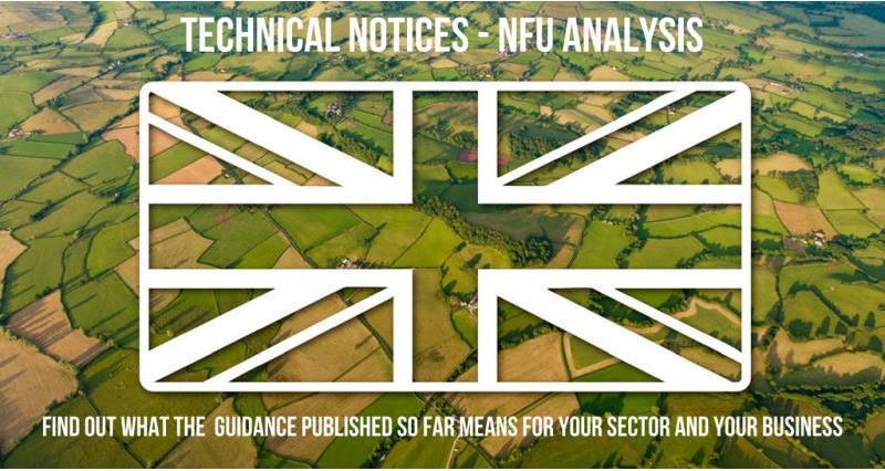 Brexit technical notices - nfu analysis - union jack flag_57031