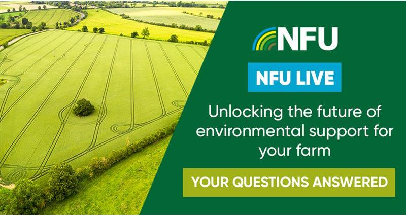 Future environmental support: Your questions answered