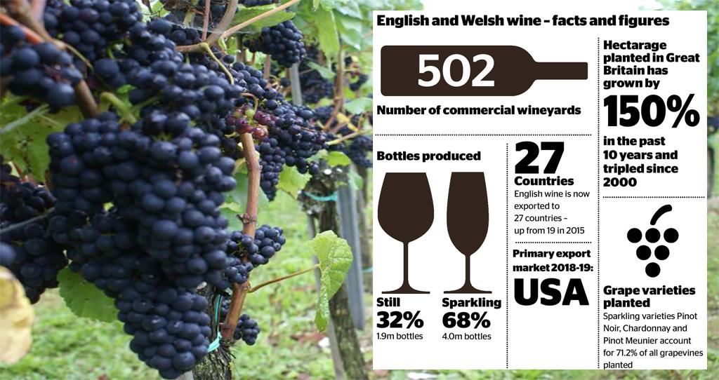 English wine, stats_57993