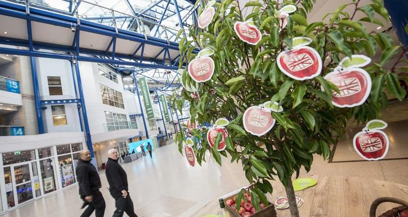 Pledge tree at NFU conference 2018_51707
