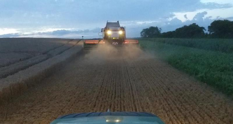 Mixed harvest shows need for government to drive arable productivity