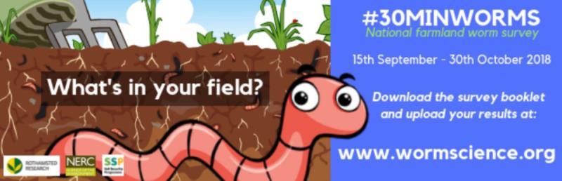 30 minute worms jackie stroud_57458