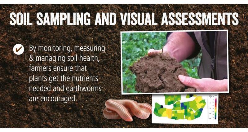 Soil Health soil sampling _52077