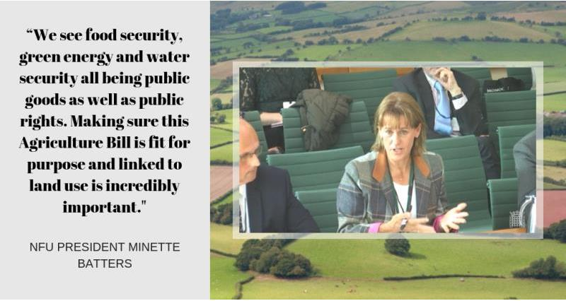 Minette Batters Agriculture Bill evidence_58160