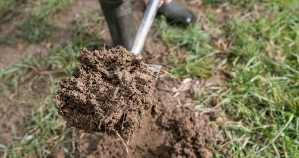 Digging soil (Countryside online)_53743