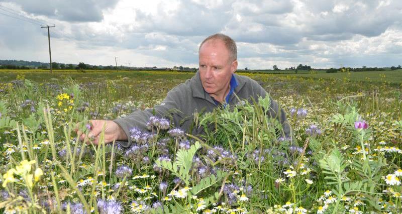 Rutland farmer Andrew Brown_58378
