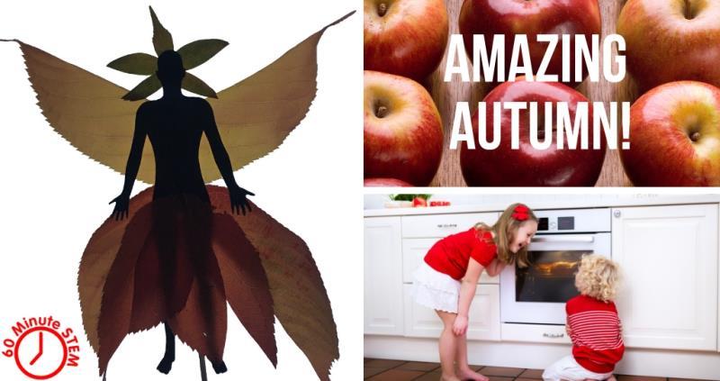 Amazing autumn_58334