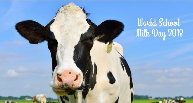 school milk day 2_56963