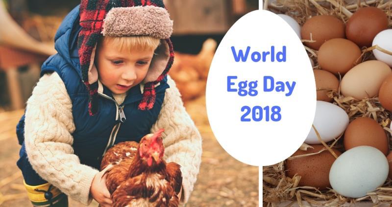 world egg day 2018_57623