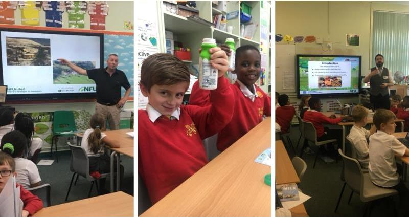 classroom milk_57603