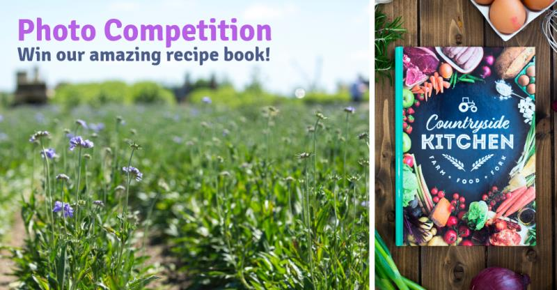 Win our recipe book with our new competition