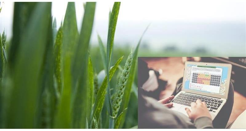 CHAP launches CropMonitor Pro
