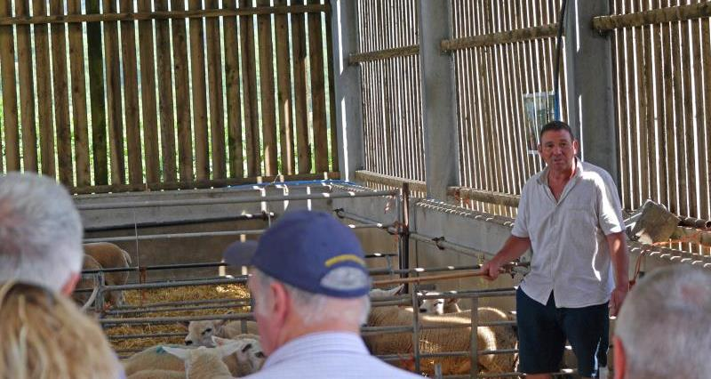 Glos sheep farming day 2_55499