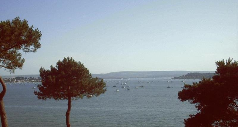 Poole Harbour_55492