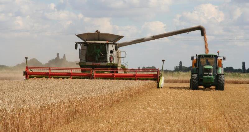 Harvest at Park Farm Thorney_17113