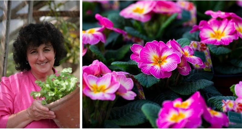 Pippa Greenwood's May gardening tips