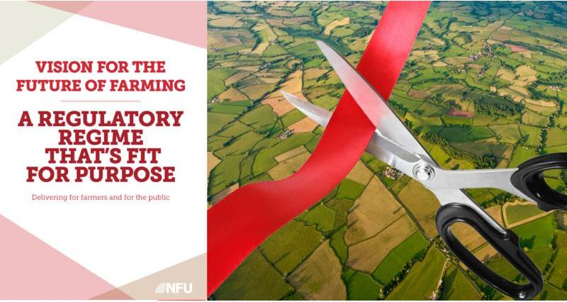 nfu regulation vision paper and red tape scissors, brexit, august 2017-1_45963