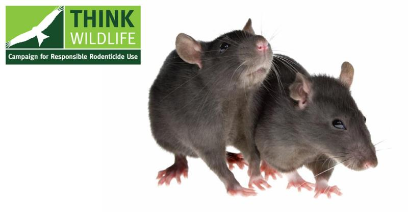 campaign for the responsible use of rodenticides, rats, logo_41466