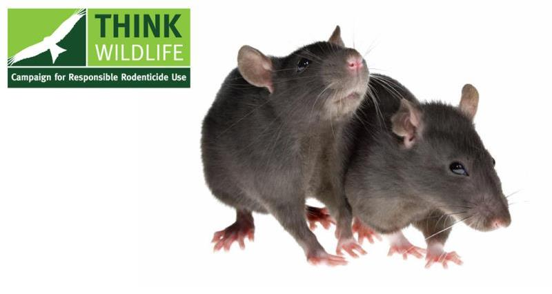 Red Tractor standards recognised by Campaign for Responsible Rodenticide Use