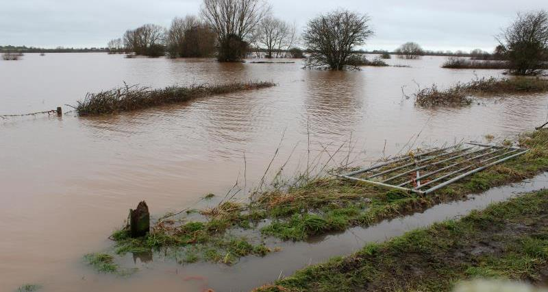 Flooding in the South West February 2014, Somerset Levels_20721