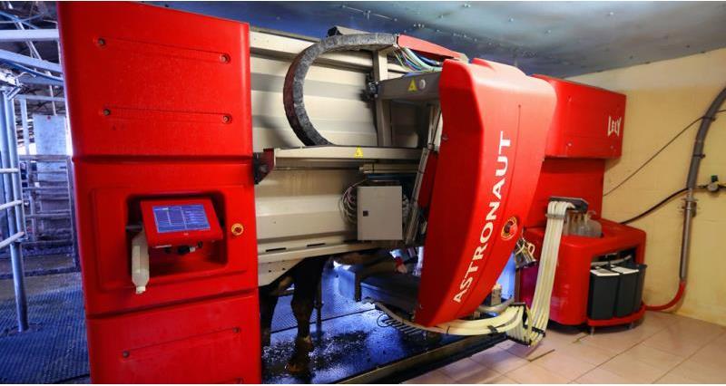 robotic milking, machine, dairy, bridgefarm_nfu_53169