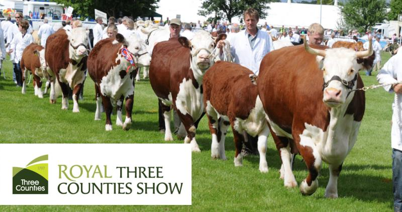 royal three counties show logo and show ring, cattle_43183