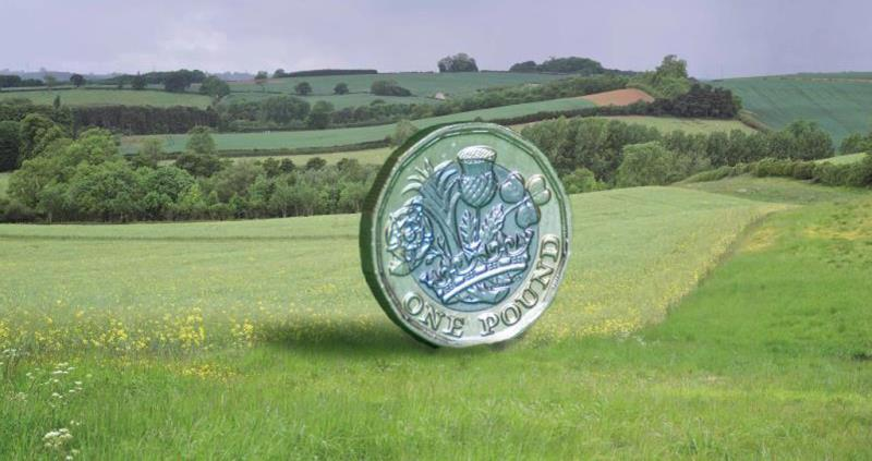 pound coin in landscape, farming business, countryside, web crop_47375