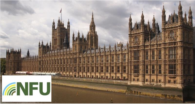 How does the NFU lobby?