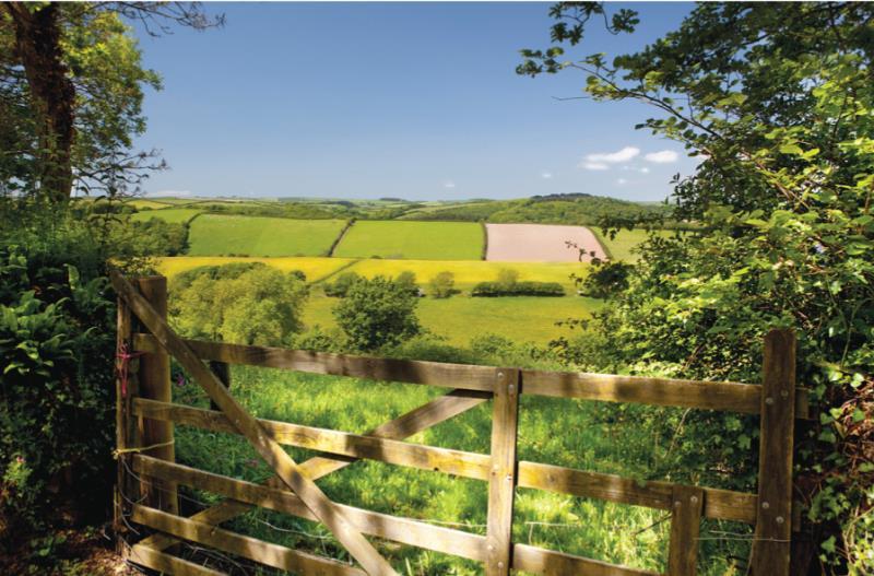 Farm gate and field_11525