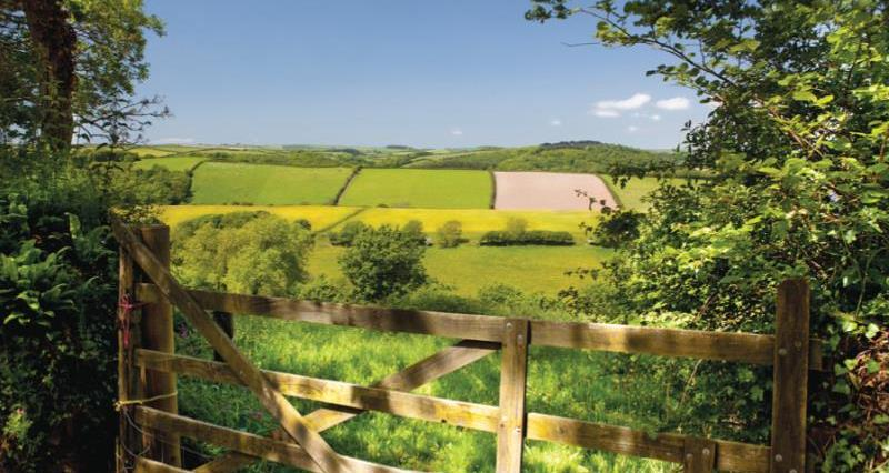 Farm gate and field_11525