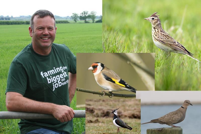 richard bramley farmland bird banner_32658