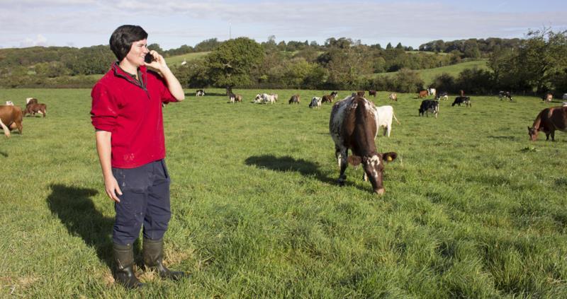 livestock, dairy, nfu membership, farmer on phone, mobile, telephone_36666
