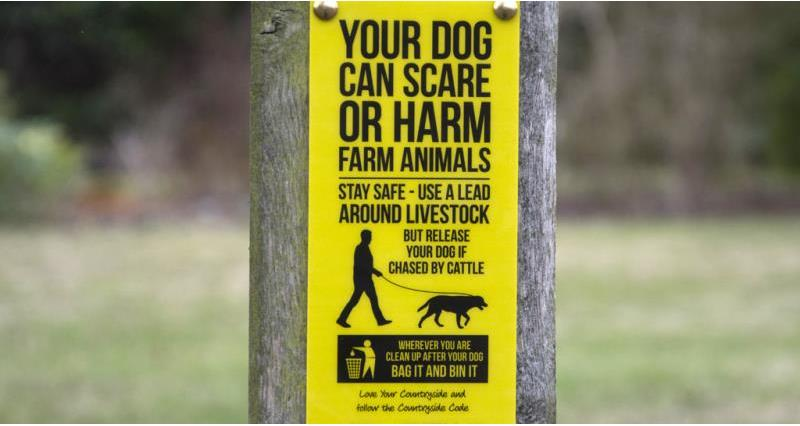 dog walking sign 2015, web crop, love your countryside_38511