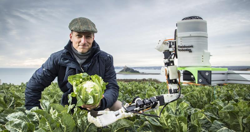 robot harvest, automated brassica harvest in cornwall project, dr martin stoelen_53168