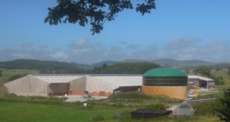 Rainton Farm_20908