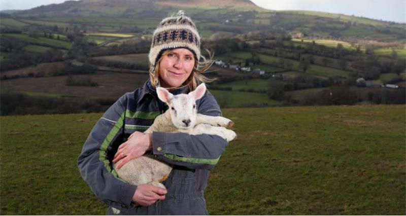 7 days in the lambing shed